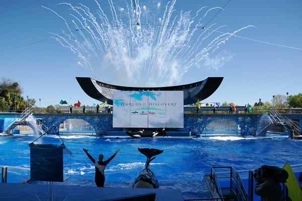 SeaWorld Orlando & Shamu-resized-600