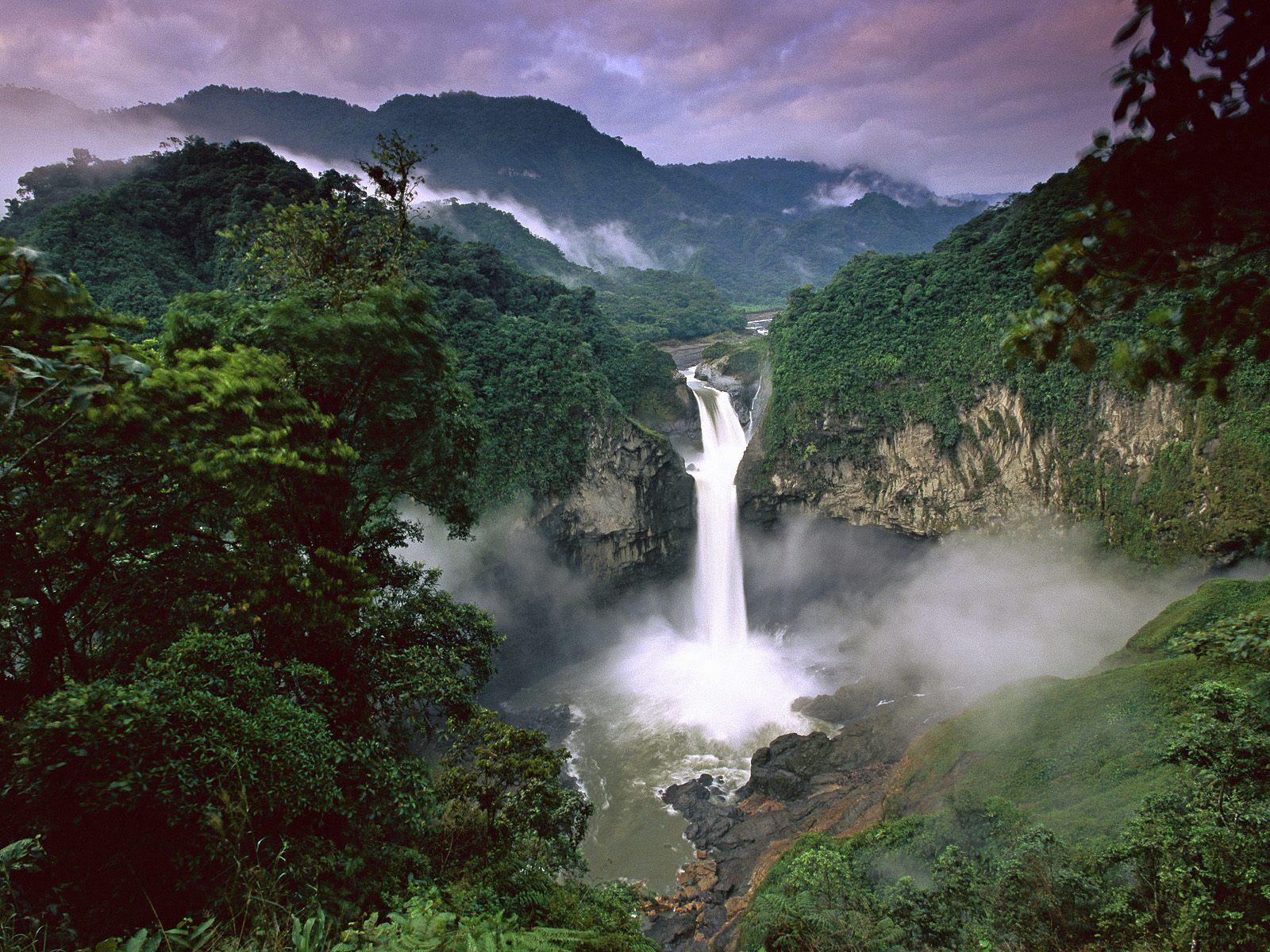 Amazonía. Foto de Archivo, La República.