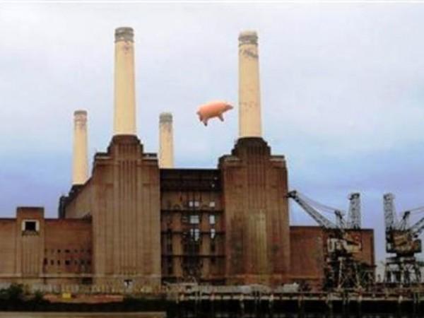 cerdo Londres