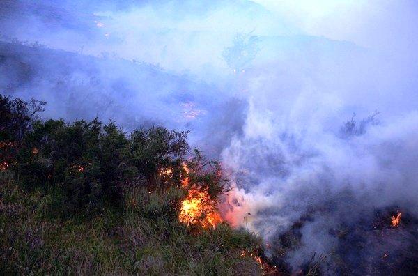 incendio-que-afecta-al-parq_