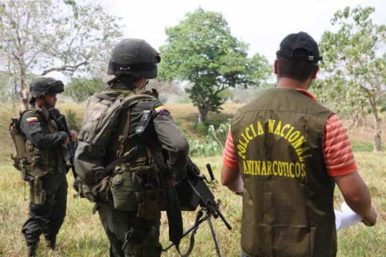 policia_antonarcoticos_colombia
