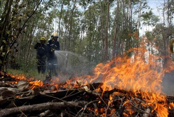 incendio_patagonia_argentina1