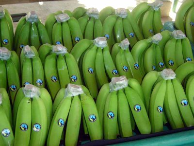 banano_organico fairtrade