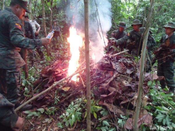 militares queman coca