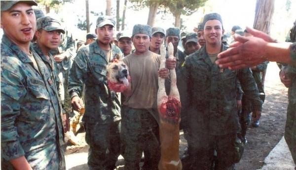 militares_perro_decapitado1