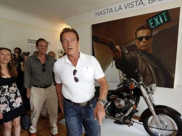Schwarzenegger austria