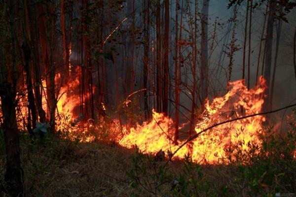 QUITO 06 DE SEPTIEMBRE DE 2012, Incendio originado en el valle de Tumbaco, en el sector de Lumbisí cercano a Cumbayá, el humo del incendio cubre el norte de Quito. El flagelo que comenzó a las 09:00 los bomberos le apagaron, pero se reactivó en la tarde de hoy y se prolongó hasta el sector de San Francisco de Pinsha. APIFOTO