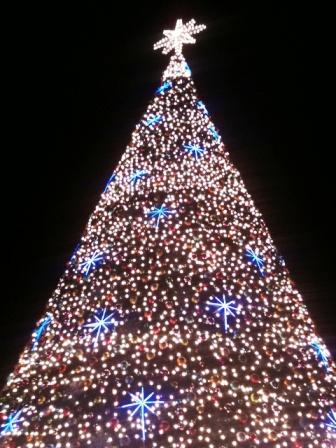 arbol navidad malecon