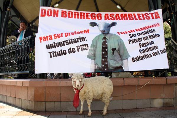 don borrego