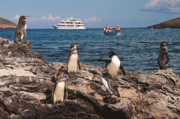 Islas Galápagos. Foto de Archivo, La República.