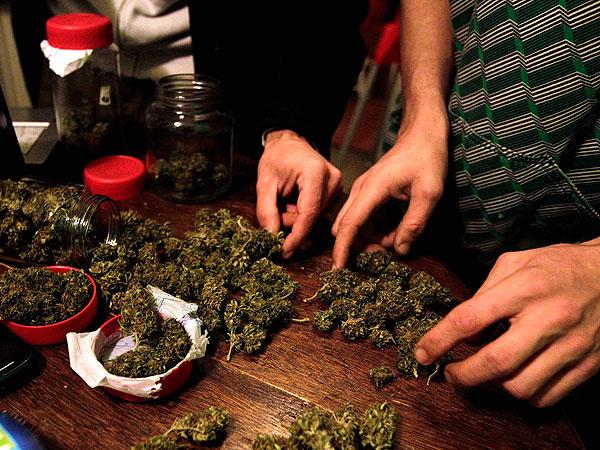Marihuana_
