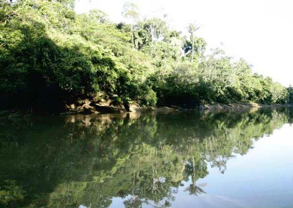 Amazonia-ecuatoriana-