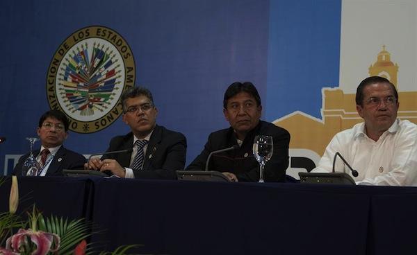 Jaua, Patiño, CIDH, OEA