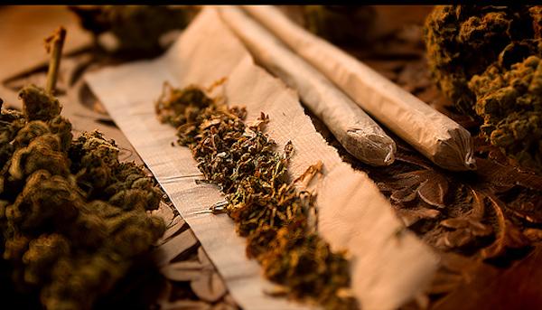 Marihuana. Foto de Archivo, La República.