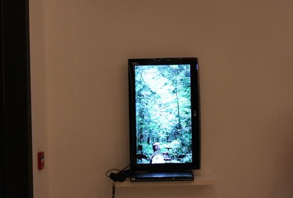 """""""Acompañamiento"""", consiste en un video realizado en un bosque con unos músicos que acompañan los movimientos del bosque"""