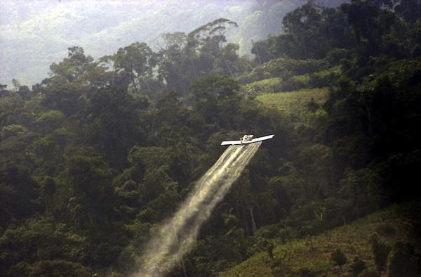 Aspersiones con glifosato del gobierno colombiano. Foto de Archivo, La República.