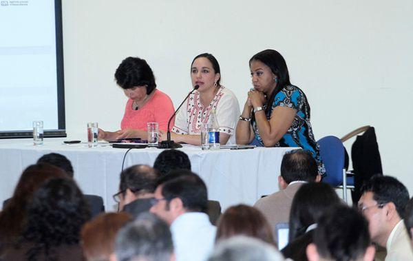 QUITO 28 DE NOVIEMBRE DEL 2013. Reunion del Alianza Pais. FOTOS API / JUAN CEVALLOS.