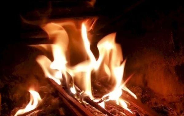 fetos quemados