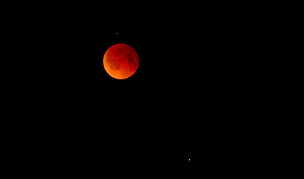 Luna. Foto de Archivo, La República.