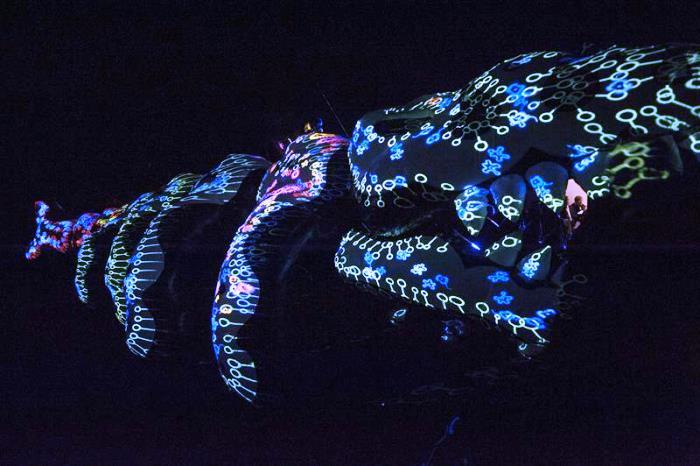 """MAR DEL PLATA (ARGENTINA), 19/07/2014.- Vista de la instalación interactiva """"Osedax"""", del colectivo Proyecto Biopus, que recrea con luces los organismos invertebrados que se alimentan de los huesos de un esqueleto de ballena en la muestra """"El museo de los mundos imaginarios"""""""