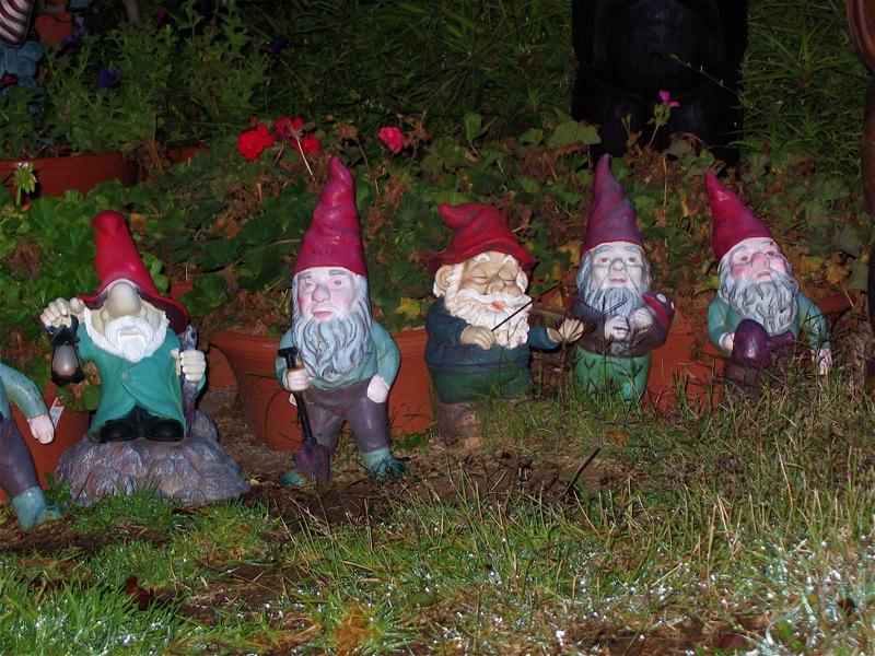 Misterioso secuestro de enanos de jard n sacude la for Enano jardin