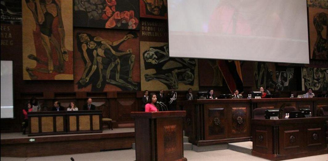 Asamblea reformas Código Civil