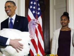 """El presidente estadounidense, Barack Obama (c), perdona al pavo del Día Nacional de Acción de Gracias llamado, """"Cheese"""", junto a sus hijas Sasha (2-d) y Malia (d) y el director de la Federación Nacional del Pavo, Gary Cooper (2-i), y su hijo, Cole Cooper (i), en la Casa Blanca en Washington (EE.UU.). Los pavos de este año """"Cheese"""" y """"Mac"""", ambos de 48 libras, fueron criados en Ohio y viajarán a su hogar permanente en """"Turkey Hill"""", en el parque Morven en Leesburg, Virginia. EFE/MICHAEL REYNOLDS"""