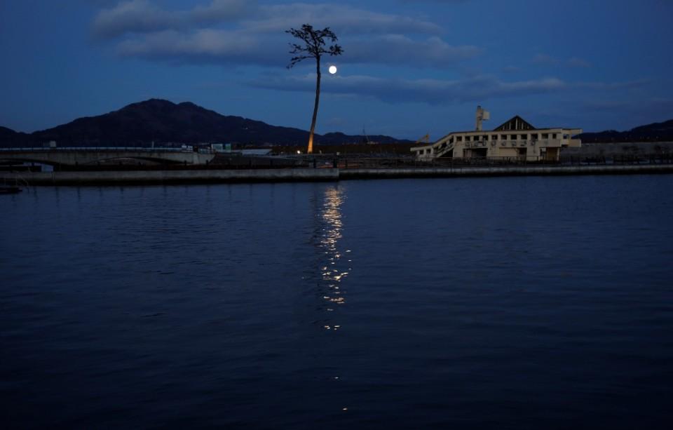 En esta imagen del 5 de marzo de 2015, el único pino que sobrevió en la zona al mortal tsunami de 2011 se alza en Rikuzentakata, en la rpefectura de Iwate, nordeste de Japón. (AP Foto/Eugene Hoshiko)