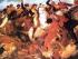 En Ibarra se libra la batalla del 17 de julio de 1823. Foto de Globedia.