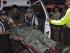 Fotografía cedida por el Ministerio de Defensa de Ecuador donde se ve a un militar ecuatoriano herido en un centro de atención hoy, domingo 16 de agosto de 2015. Foto de archivo. EFE/MINISTERIO DE DEFENSA