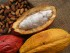 """Fotografía facilitada por la oficina de promoción de exportaciones e inversiones Pro Ecuador, que busca atraer nuevos clientes en una exhibición organizada en Sídney, en la que Ecuador promociona sus productos """"gourmet"""", entre los que destaca el cacao """"Arriba fino"""". Australia constituye un mercado atractivo por su capacidad adquisitiva y su interés por los productos refinados. EFE"""