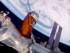 En esta foto suministrada por la NASA se ve el proceso de acoplamiento de una nave de carga a la estación espacial internacional en órbita el 24 de agosto del 2015. La nueva carga incluye whisky y otros licores. (NASA via AP)