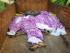 Los cuerpos de mujeres que han sido acusadas de practicar brujería son acomodados en un camión en la aldea Kinjia en el estado Jharkhand, India, el sábado 8 de agosto de 2015. Docenas de aldeanos golpearon a muerte a las cinco mujeres el sábado, tras acusarlas de practicar brujería y culparlas por una serie de desgracias en la aldea, dijo la policía. (Foto AP)