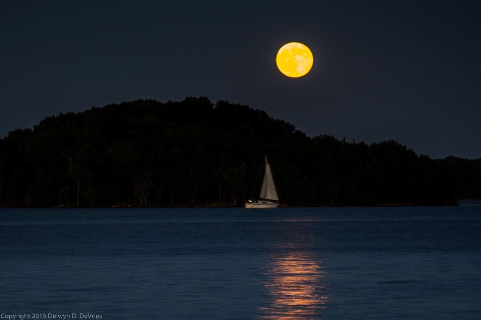 """La """"luna azul"""", como se vio en Smith Springs, Nashville, Tennessee, el 31 de julio de 2015. Del flickr de Deldevries."""