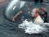 Presidente ruso Vladimir Putin, a bordo de un batiscafo que se sumerge en el Mar Negro frente a la costa de Sebastopol, Crimea, el martes 18 de agosto de 2015. (Alexei Nikolsky/RIA-Novosti, Kremlin Pool Photo via AP)