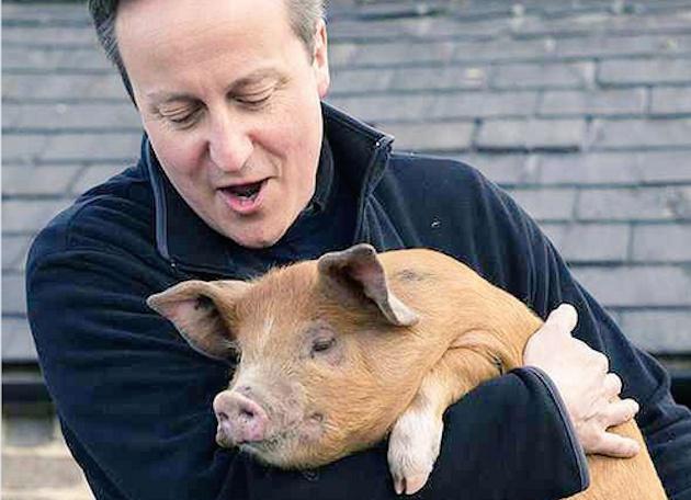 El cerdo de David Cameron y otros trapos sucios de la