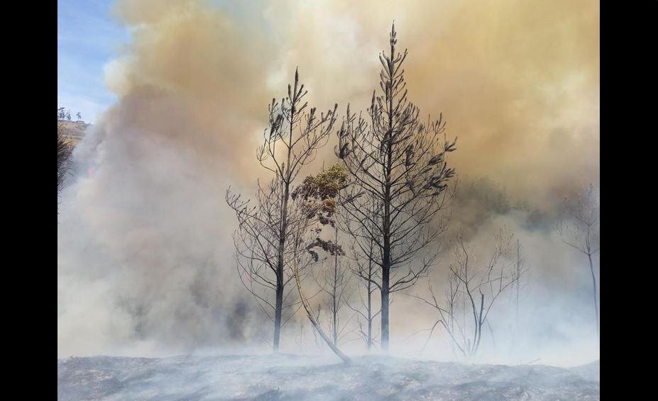 Foto del incendio forestal en La Vicentiina, en Quito. tuiteada por el Cuerpo de Bomberos la tarde del 15 de septiembre de 2015.