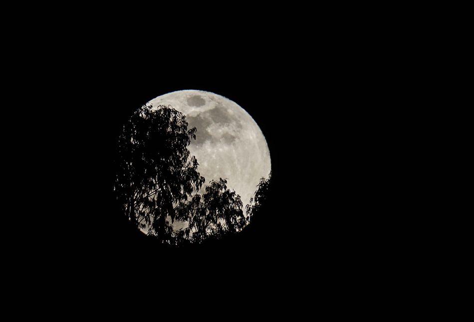 La superluna vista hoy, domingo 27 de septiembre de 2015, desde Quito (Ecuador), durante el eclipse total de Luna. EFE/José Jácome