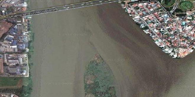 Vista Satelital del islote en el río Guayas