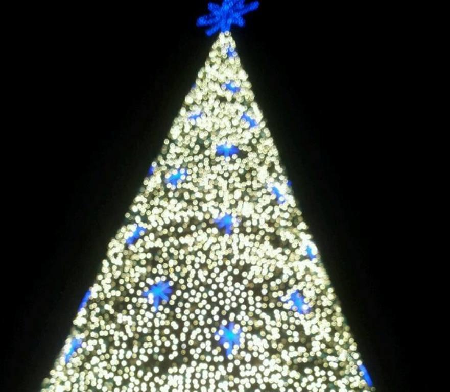 Encienden árbol de Navidad de Malecón 2000 – La República EC