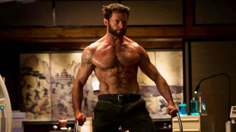 Wolverine. Foto: warriorzen.com
