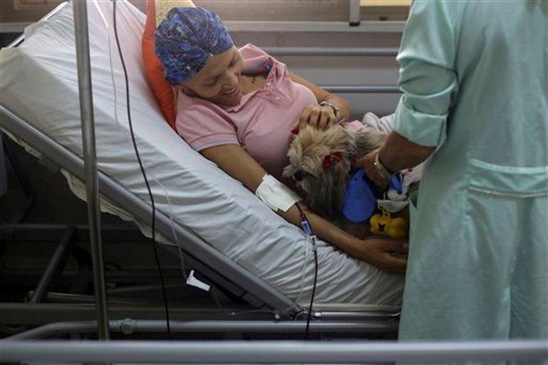 En imagen del 17 de noviembre de 2016, Herivania de Souza, una paciente de cáncer de 30 años, juega con un perro Shitzu llamado Mille que la visita en su cama como parte del programa de terapia canina en el Hospital de Apoyo de Brasilia, Brasil. (AP Foto/Eraldo Peres)