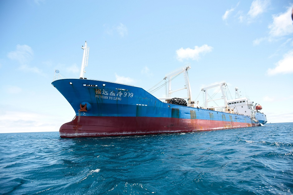 Comienza el juicio contra la tripulación de un pesquero chino con especies protegidas en sus bodegas
