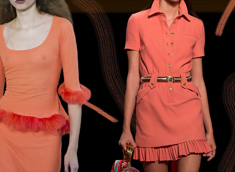Living_Coral_Pantone_2019_color_of_the_year
