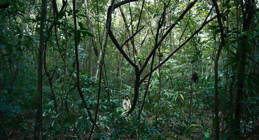 selva tragica