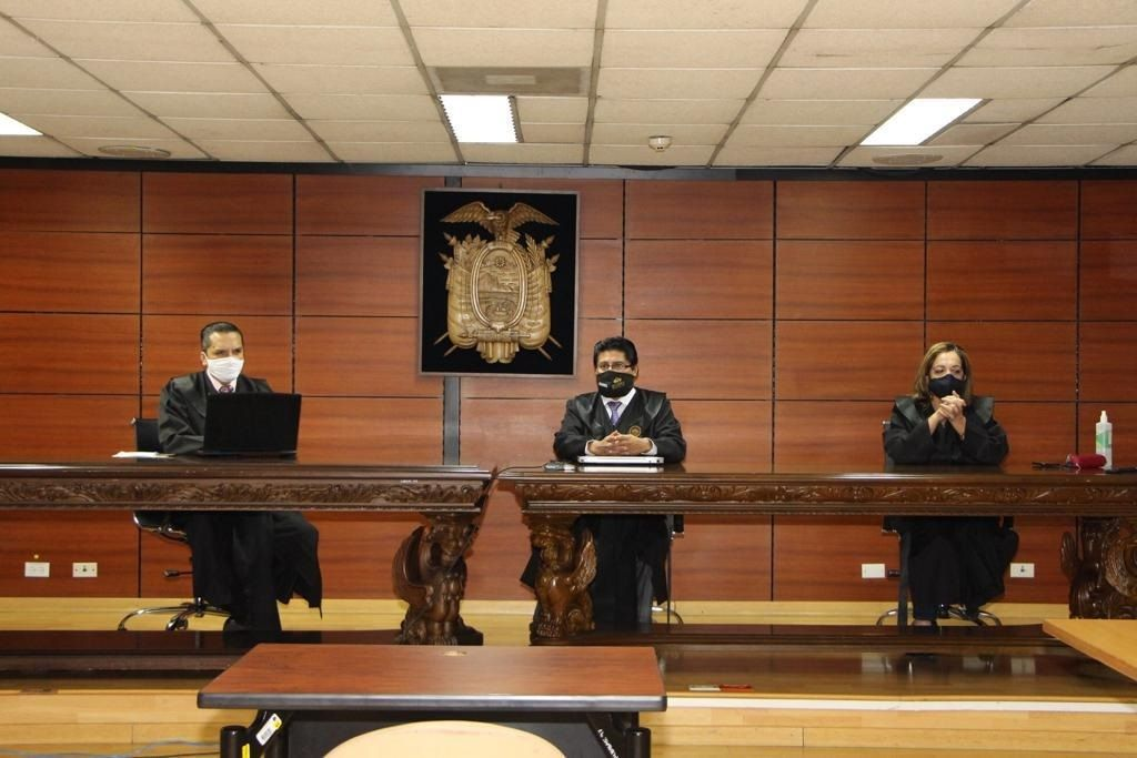 tribunal apelación